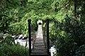 Kurt Schaffer Bridge in the Rwenzori Mountains.jpg