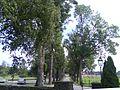 Kyrkogården vid Holms kyrka, allén till Bergs säteri05.jpg