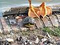 La tortuga y el ganso (31995176614).jpg