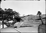 Lady Macquarie's Chair, Sydney (2532451641).jpg