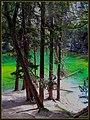 Lago Verde in valle Stretta - panoramio.jpg