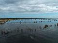 Lake Abanampotsy - fishermen nets (2).jpg