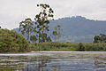 Lake Mutanda - Kisoro, Uganda (4).jpg