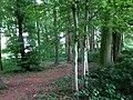 Landschaftsschutzgebiet Warmenau-Ufer LSG OS 00019 Datei 16.jpg