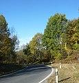 Landstraße zwischen Zeckendorf und Ludwag - panoramio.jpg