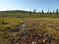 Lapland - Urho Kekkonen National Park - 20180728171052.jpg