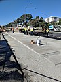 Laying light rail slab at Northbourne and Macarthur Avenues.jpg