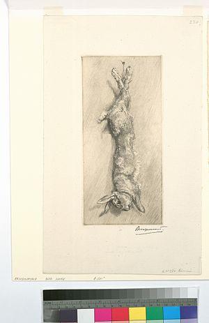 image of Le lapin de garenne (NYPL b14506647-1128888)