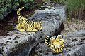 Legoland Windsor - Tiger Cubs (2835909354).jpg