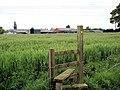 Leighton - Mile House across the barley - geograph.org.uk - 809385.jpg