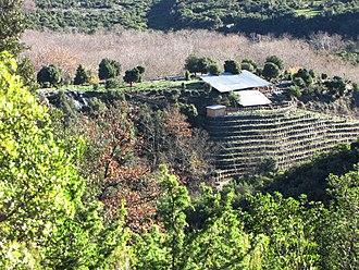 Leivithra - The acropolis of ancient Leivithra