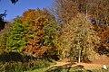 Les milles couleurs de l'automne sous un ciel clair (22809249205).jpg