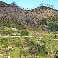 Levada Wanderungen, Madeira - 2013-01-10 - 85900207.jpg