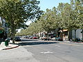 Lincoln Ave - Willow Glen.JPG