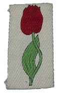 LincolnshireCounty Division Insignia