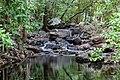Litchfield National Park (AU), Florence Creek -- 2019 -- 3745.jpg