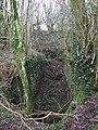 Llanfyrnach mine, machine pit - geograph.org.uk - 656928.jpg