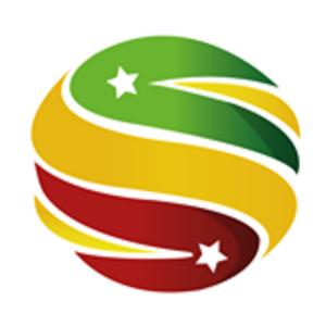 Seneweb.com - Logo seneweb