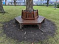 Long shot of the bench (OpenBenches 9588-1).jpg
