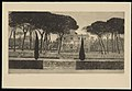 Louise Danse - Piazza Siena, Villa Borghèse, Roma - Graphic work - Royal Library of Belgium - S.V 19431.jpg