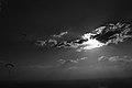 Luz e escuridao! (8028565058).jpg