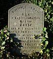 MOs810 WG 55 2016 Pyzdry Forest III (Evangelical Cemetery in Stawiszyn) (Regina Laube).jpg