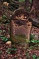Macewy na cmentarzu cholerycznym - panoramio (5).jpg
