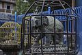 Machhindra Bahal Lalitpur-IMG 4788.jpg