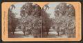 Magnolia Garden, Charleston, S.C., U.S.A, by Keyser, Nicaise de, 1813-1887.png