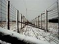 Majdanek hek.jpg