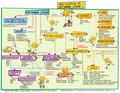 Mapa conceptual del software libre 2.png