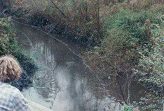 Martin County coal slurry spill 2000 environmental disaster in Martin County, Kentucky