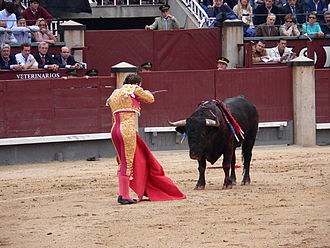Bullfighter - A matador in the Plaza de Toros Las Ventas, Madrid, in the final stage of the bullfight, the tercio de muerte