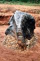 Mbozi meteorite - 02.jpg