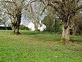 McCauley's house, Omagh - geograph.org.uk - 1196377.jpg