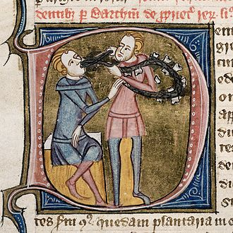 Medieval medicine of Western Europe - A dentist with silver forceps and a necklace of large teeth, extracting the tooth of a well seated man. Omne Bonum (England - London; 1360–1375).