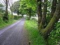 Meenagorp Road - geograph.org.uk - 1313682.jpg