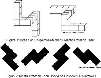Mental rotation - Image: Mental rotation task (diagram)