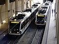 Metrogoldlinemem.jpg