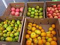 Mid-City Green Market 6-28-2012 7.JPG
