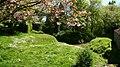Mill Pond^ - geograph.org.uk - 430182.jpg