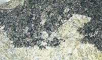 Mineraly.sk - tenorit.jpg