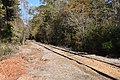 Mississippi Central Railroad 2018 3.jpg