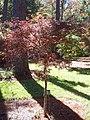 Mobile Botanical Gardens.jpg
