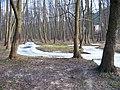 Mokřady dolní Liběchovky, u Želíz.jpg
