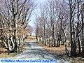 Monte Beigua - panoramio - Stefano Mazzone (2).jpg
