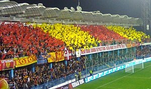 Montenegro national football team - Montenegrin supporters