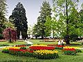 Morges-Fete Tulipe 9.jpg