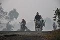 Morning Commuters - NH-34 - Sargachi - Murshidabad 2014-11-29 0126.JPG