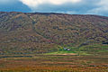 Morven, Scotland, 15 Sept. 2010 - Flickr - PhillipC.jpg